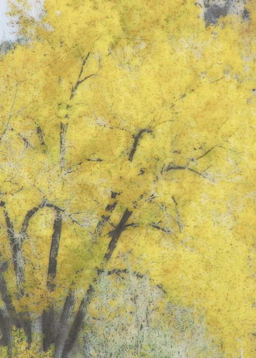 Tree Greeting Card featuring the digital art Yellow Trees by Ann Powell