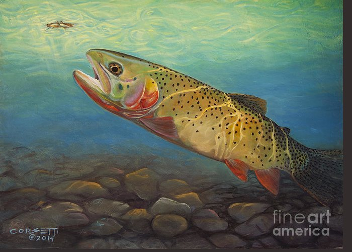 Wall Art Greeting Card featuring the painting Yellowstone Cut Takes A Salmon Fly by Rob Corsetti