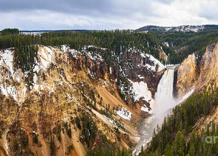 Yellowstone Falls; Waterfall; Falls; Snow; Yellowstone National Park; Water; Thundering; Snow; Landscape; Scenic; Forest; River; Grand Canyon Of Yellowstone; Lower Yellowstone Falls; Winter; Flowing; Big Waterfall; Cascade; Plunge; Cataract; Large Waterfall; Overlook; Vista Point; Turquoise; Colored Rocks; River; Rapid; Vitality; Powerful; Wyoming; Travel Photography; Vertical; Power; Mighty; Awe; National Landmark; Majestic; Steep; Ridge; Cliff; Erosion; Eroded; Geology; Panorama Greeting Card featuring the photograph Yellowstone Falls Panorama by Jamie Pham