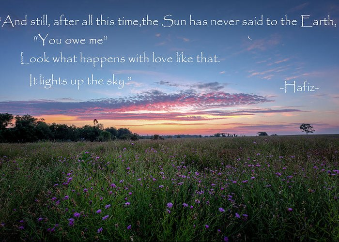 Hafiz Greeting Card featuring the photograph You Owe Me by Bill Wakeley
