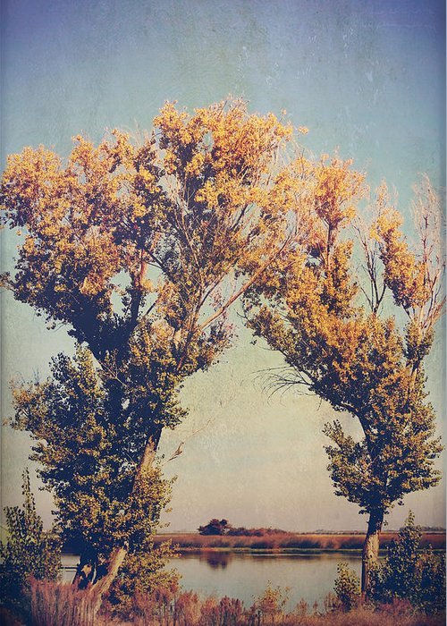 Trees Greeting Card featuring the photograph You Were Meant For Me by Laurie Search