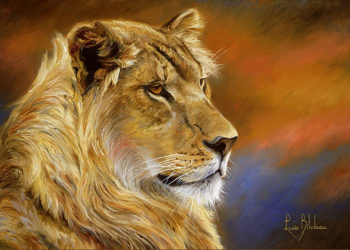 Young Lion Greeting Cards