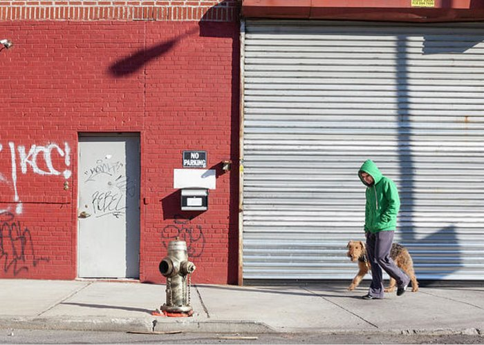 Pets Greeting Card featuring the photograph Young Man Walks Dog by Alex Potemkin