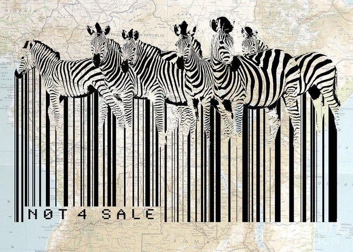 Zebra Digital Art Greeting Cards