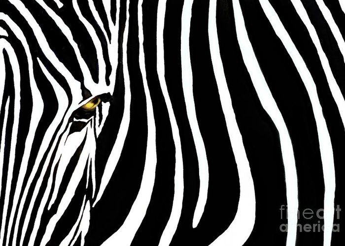 Zebra Greeting Card featuring the photograph Zebressence by Dan Holm