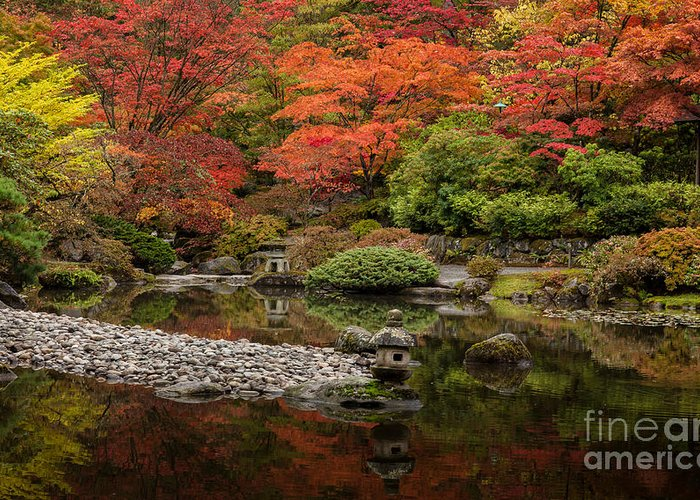Fall Colors Greeting Card featuring the photograph Zen Foliage Colors by Mike Reid