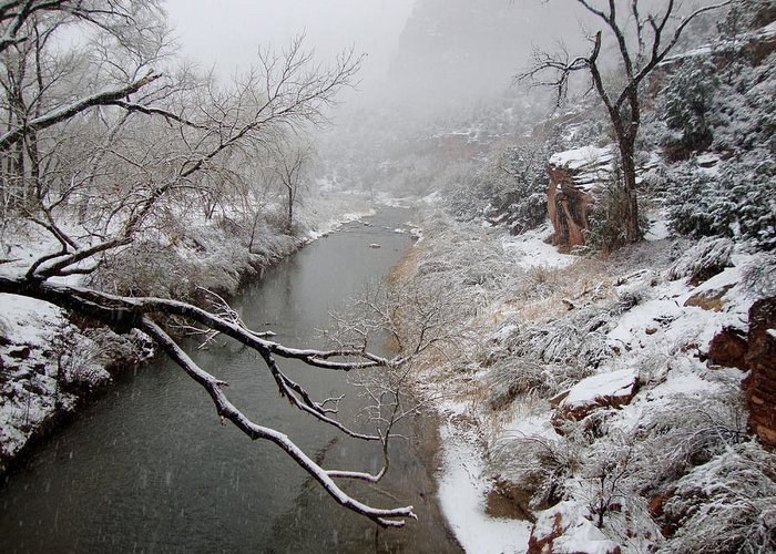 Zion National Park Greeting Card featuring the photograph Zion's Virgin River by Annie Adkins