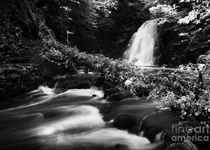Glenoe Greeting Card featuring the photograph Gleno Or Glenoe Waterfall Beauty Spot County Antrim Northern Ireland by Joe Fox