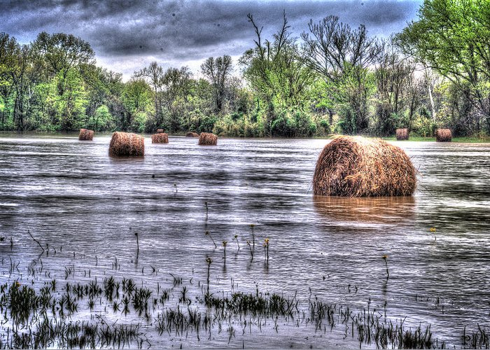 Farm Greeting Card featuring the photograph 0804-3586 Flooded Hay by Randy Forrester