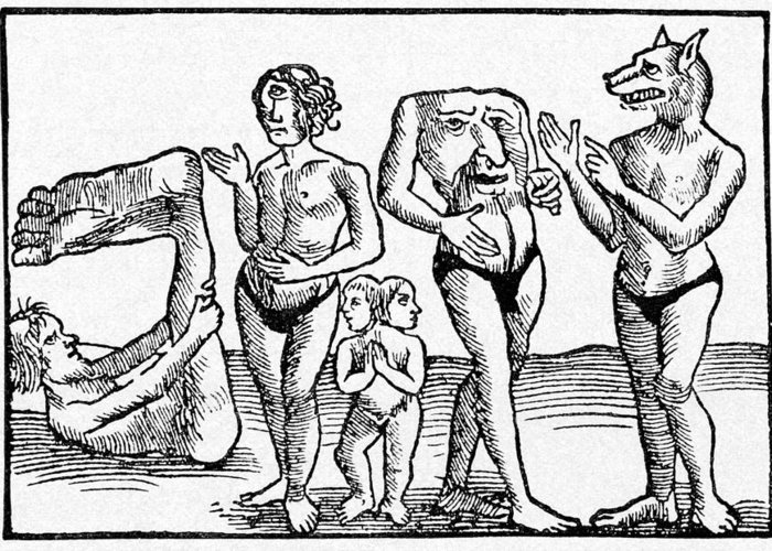 Animal Greeting Card featuring the photograph 16th Century Woodcut Print by Cci Archives
