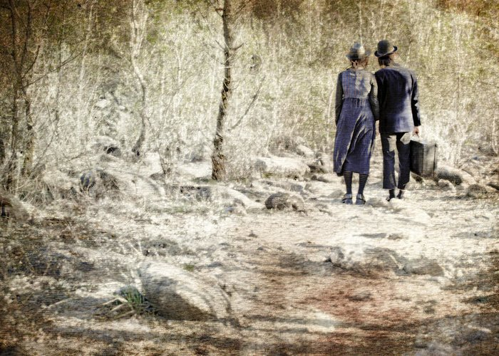 Pair Greeting Card featuring the photograph A Couple In The Woods by Joana Kruse