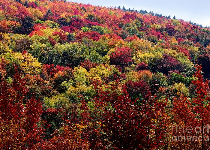 Fall Greeting Card featuring the photograph Autumn Along The Highland Scenic Highway by Thomas R Fletcher