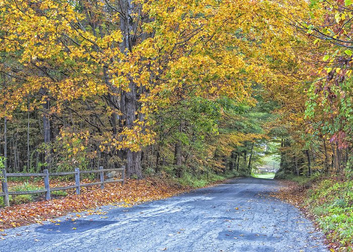 Autumn Road Vermont Greeting Card featuring the photograph Autumn Road by Tom Singleton
