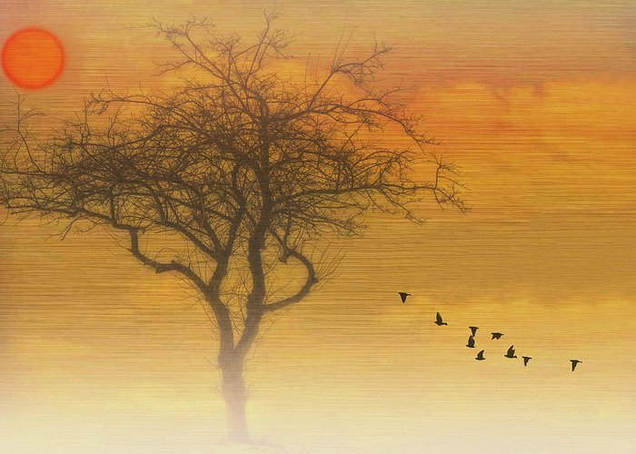 Nature Photography Greeting Card featuring the photograph Back To The Nest by Tom York Images