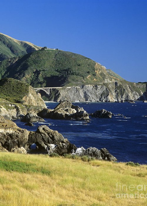 Craig Lovell Greeting Card featuring the photograph Big-sur-t1-3 by Craig Lovell