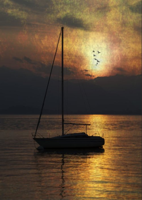 Boat Greeting Card featuring the photograph Boat In Sunset by Joana Kruse