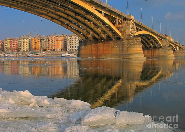 Nature Greeting Card featuring the photograph Bridge by Odon Czintos