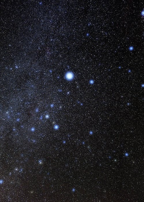 Sirius Greeting Card featuring the photograph Canis Major Constellation by Eckhard Slawik