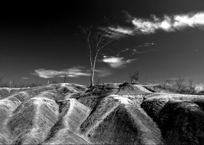 Black And White Greeting Card featuring the photograph Cheltenham Badlands by Cale Best