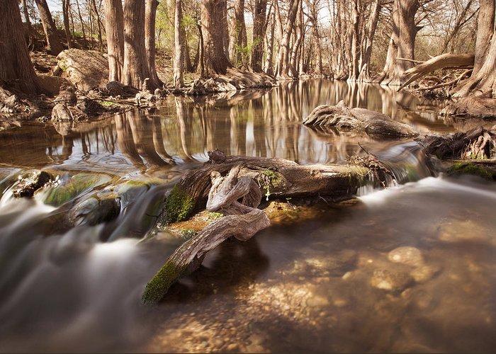 Cibolo Creek Greeting Card featuring the photograph Cibolo Creek by Paul Huchton