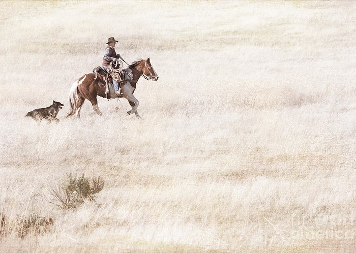 Cowboy Greeting Card featuring the photograph Cowboy And Dog by Cindy Singleton