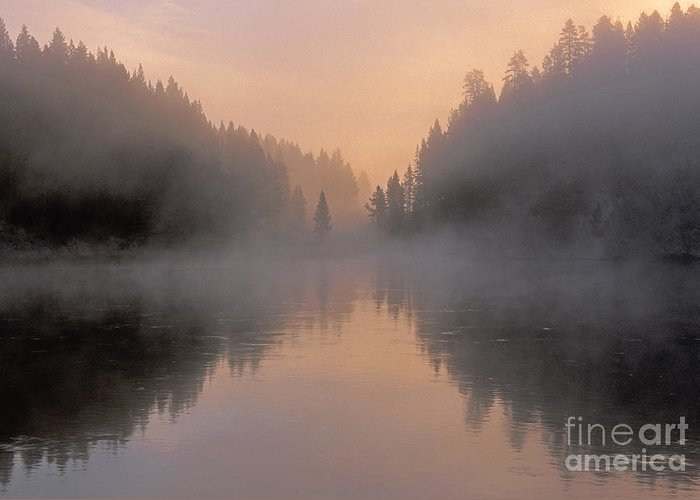 Bronstein Greeting Card featuring the photograph Dawn On The Yellowstone River by Sandra Bronstein