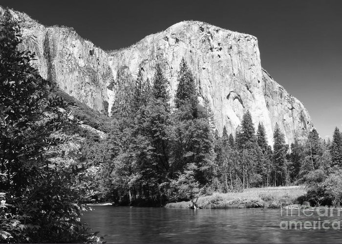Black&white Greeting Card featuring the photograph El Capitan And Merced River by Sandra Bronstein