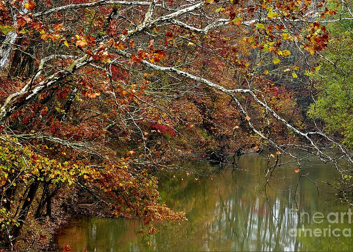 West Virginia Greeting Card featuring the photograph Fall Along West Fork River by Thomas R Fletcher