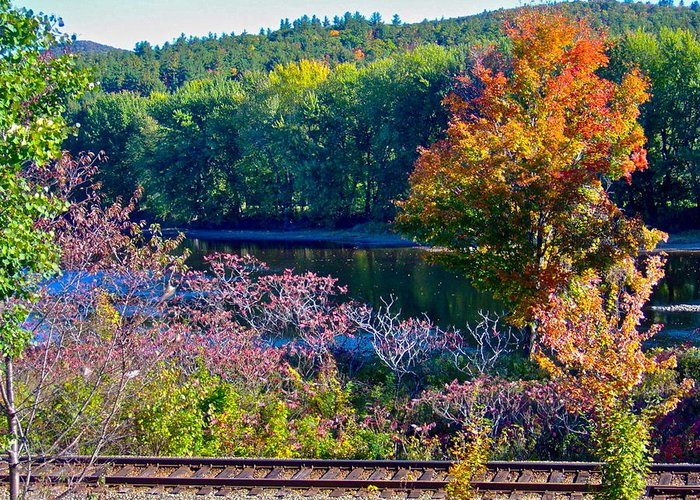 Landscape Greeting Card featuring the photograph Fall By The River 4 by George Ramos