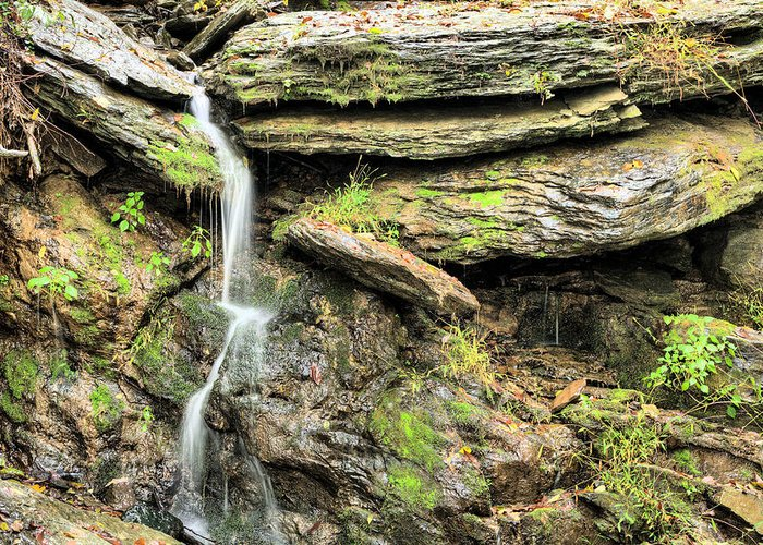 Waterfall Mountain Mountains Creek Stream Spring Fed Natural Nature Harpers Ferry West Virginia Wv Va Md Maryland Potomac Shenandoah River Rivers Basin Watershed Falling Waters Greeting Card featuring the photograph Falling Waters by JC Findley