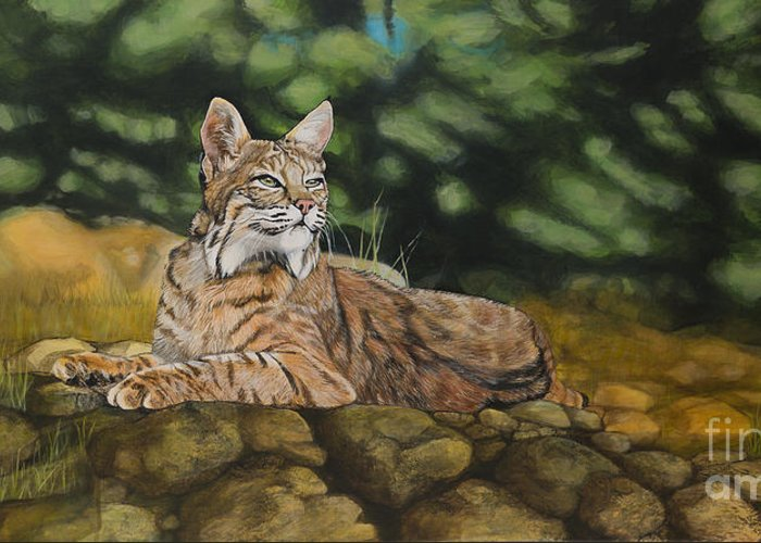 Bobcats Greeting Card featuring the painting Felicity by Jennifer Calicchio