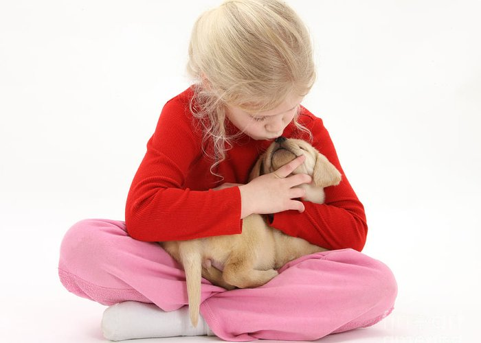 Animal Greeting Card featuring the photograph Girl With Puppy by Mark Taylor
