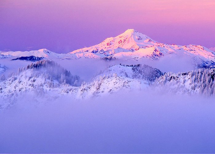 Mountain Greeting Card featuring the photograph Glacier Peak Alpenglow - Purple by Misao Okada