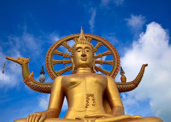 Asia Greeting Card featuring the photograph Golden Buddha by Adrian Evans