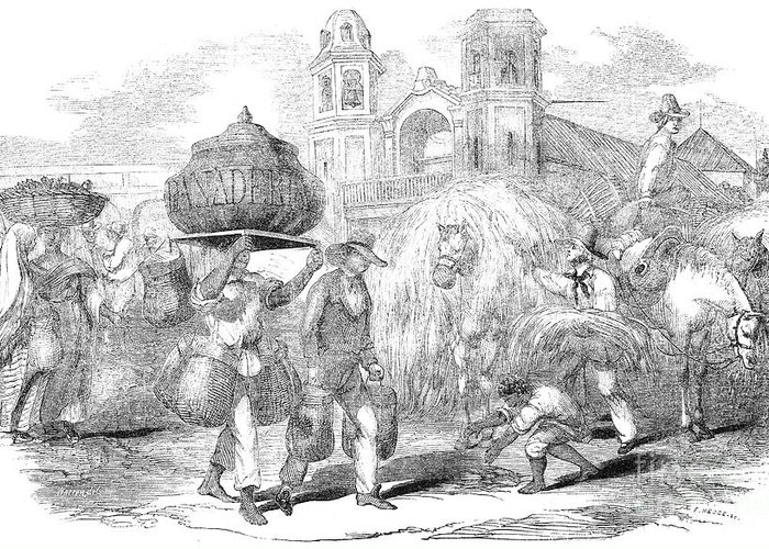 1853 Greeting Card featuring the photograph Havana, Cuba, 1853 by Granger