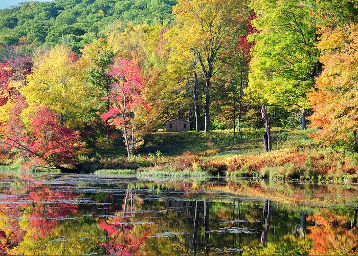 Landscape Greeting Card featuring the photograph Hideaway by Tom Heeter