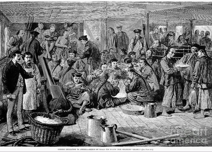 1876 Greeting Card featuring the photograph Immigrants: Chinese, 1876 by Granger
