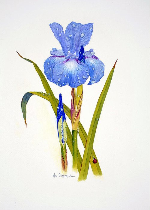 Flowers Greeting Card featuring the painting Japanese Iris by Bill Gehring