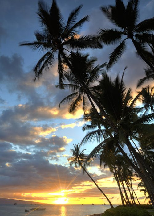 Lahaina Maui Hawaii Sunset Beach Palmtrees Sand Ebb Flow Clouds Greeting Card featuring the photograph Lahaina by James Roemmling