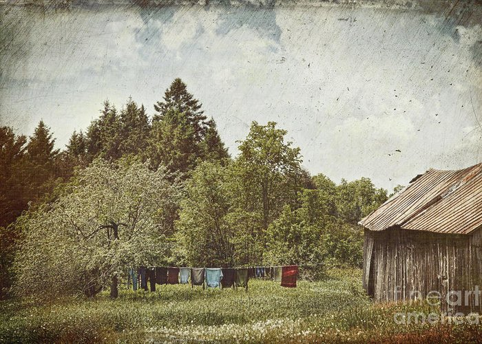 Air Greeting Card featuring the photograph Laundry Drying On Clothesline On A Summer Day by Sandra Cunningham