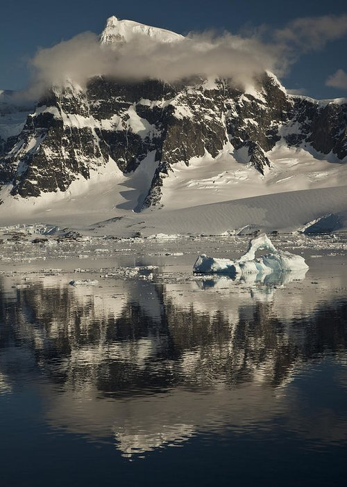 00479579 Greeting Card featuring the photograph Luigi Peak Wiencke Island Antarctic by Colin Monteath