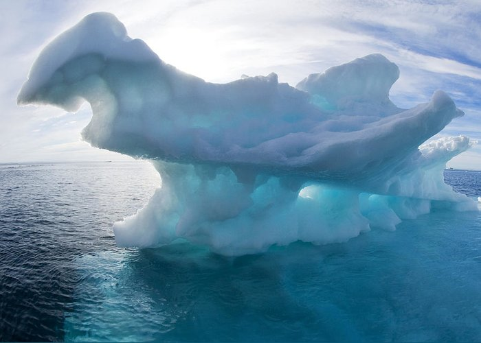 Water Greeting Card featuring the photograph Melting Arctic Sea Ice, Canada by Louise Murray