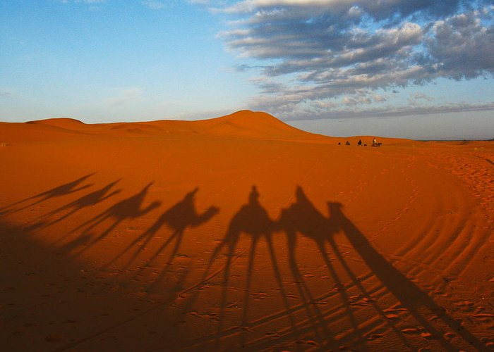 Landscape Greeting Card featuring the photograph Merzouga Desert Morocco by Ian Stevenson
