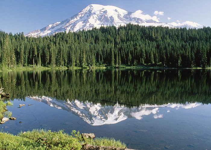 00171283 Greeting Card featuring the photograph Mt Rainier Reflected In Lake Mt Rainier by Tim Fitzharris