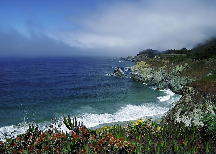 Pacific Greeting Card featuring the photograph Pacific Coast by Renee Hardison