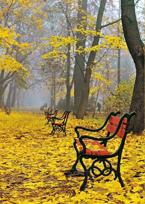 Alley Greeting Card featuring the photograph Red Benches In The Park by Jaroslaw Grudzinski