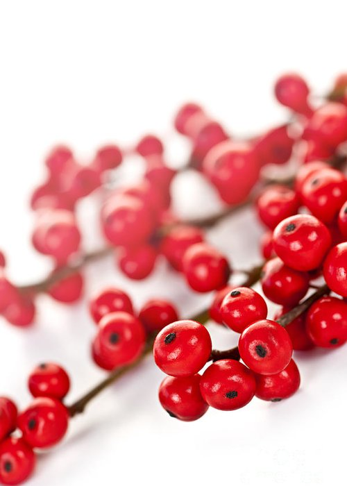 Berries Greeting Card featuring the photograph Red Christmas Berries by Elena Elisseeva