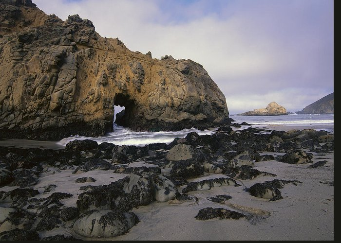 00174580 Greeting Card featuring the photograph Sea Arch At Pfeiffer Beach Big Sur by Tim Fitzharris