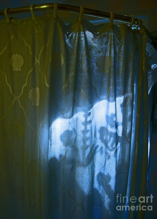 Shower Greeting Card featuring the photograph Shower Shadows by Beebe Barksdale-Bruner