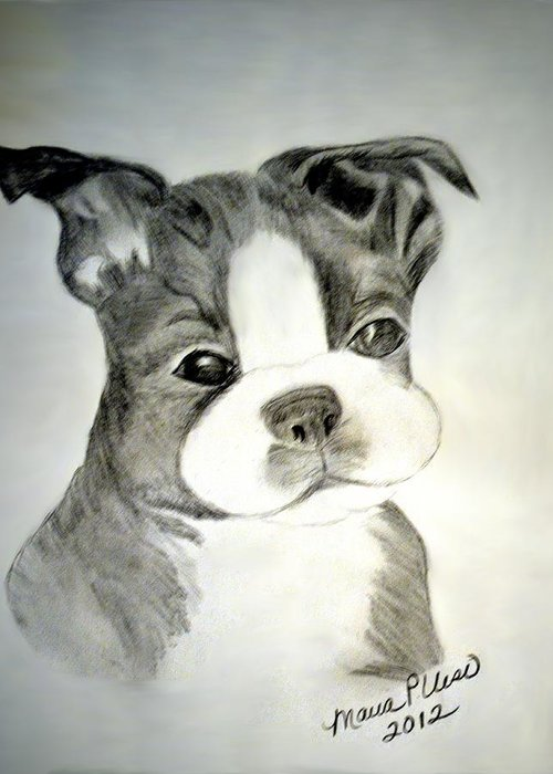 Irresistable Greeting Card featuring the drawing Simply Irresistable by Maria Urso